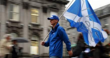 scozzia voto
