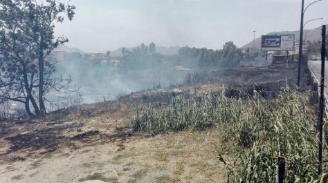 Incendi-Palermitano-5-892x500